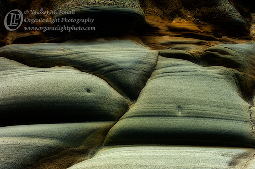 Stone Bellies